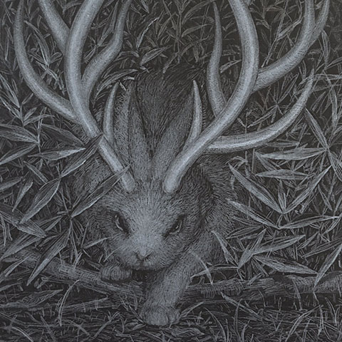 「兎ニカク」182×257mm 白鉛筆 鉛筆